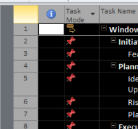 Microsoft Project - Task Pane - Select all