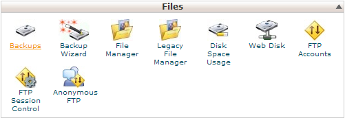 cPanel - Files - Backups icon