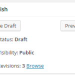 "WordPress 3 - ""Edit Post"" page - Publish section"