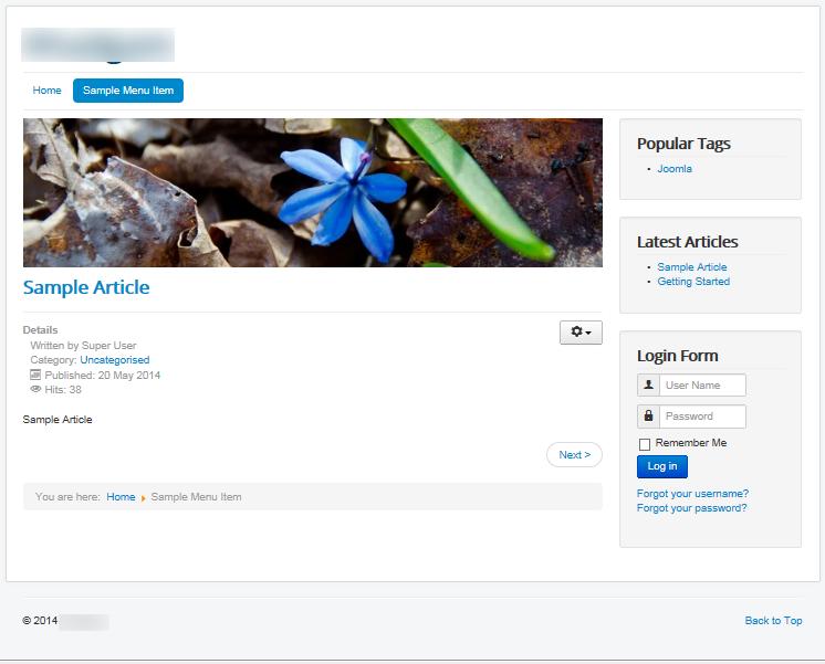 Joomla 3 - Home page with Sample Menu Item