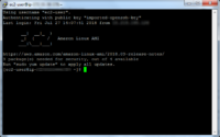 Connect to EC2 Instance