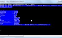 PowerShell - Host variable demo
